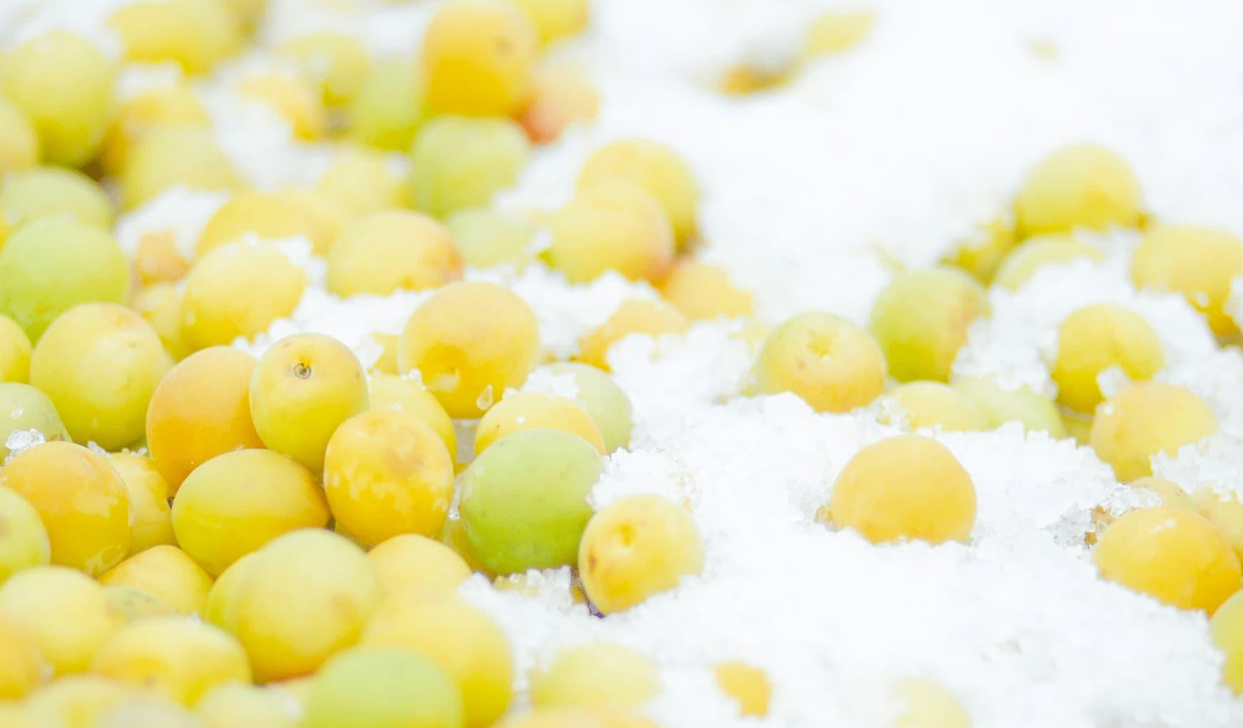 梅干しの塩抜きは難しい?<br> 梅干し専門店が簡単な方法を解説します。