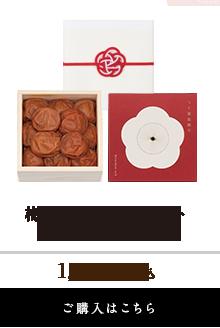 梅咲く木箱単品ギフト(うす塩味梅干250g)
