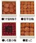梅咲く木箱セット梅4種