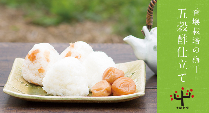 香壌栽培の梅干五穀酢仕立て