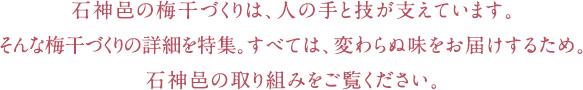 石神邑の梅干づくりは、人の手と技が支えています。そんな梅干づくりの詳細を特集。すべては、変わらぬ味をお届けするため。石神邑の取り組みをご覧ください。