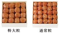 うす塩味梅干は特大粒と通常粒をご用意しております。