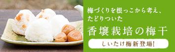 香壌栽培の梅干